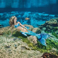 Time to flip the page of the 2017 Weeki Wachee Mermaid calendar to a beautiful image of Mermaid Katie. The mermaid tails provided for the calendar were graciously provided by the talented, Merbella Studios Inc. Mermaid Gifs, Mermaid Pose, Fin Fun Mermaid, Mermaid Images, Mermaid Pictures, Mermaid Drawings, Mermaid Art, Mermaid Paintings, Mermaid Swimming