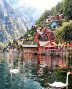 🌺🌻✿ ❀ ❁✿ For more great pins go to Wonderful Places, Beautiful Places, Float Your Boat, Austria, City Photo, Places To Go, Around The Worlds, Cabin, Explore
