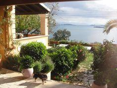Corfu town Villa For Sale Corfu town & Suburbs Corfu Town, Villas, Greece, Luxury, Plants, Greece Country, Villa, Plant, Planets