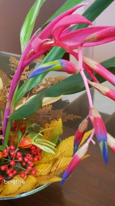 Tropical Bromeliad arrangement