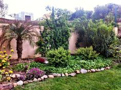 Our own garden in Cannes  www.cannesgrandparc.fi
