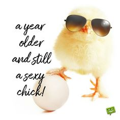 Funny happy birthday image with chick wearing sunglasses.