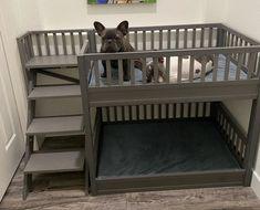 Built In Dog Bed, Dog Bunk Beds, Dog Bedroom, Diy Dog Crate, Dog Crate Furniture, Dog House Plans, Kennel Ideas, Crate Ideas, Dog Crates