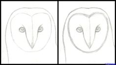 How to Draw an Owl Head, Masked Owl, Step by Step, Birds, Animals ...