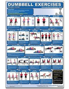 Dumbbell Exercises-Shoulders  Arms Laminated (Poster) http://www.mysharedpage.com/dumbbell-exercises-shoulders