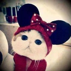 Sooooooooo cute!