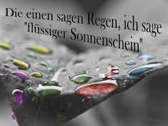 dreamies.de (z83yhabll2d.jpg)