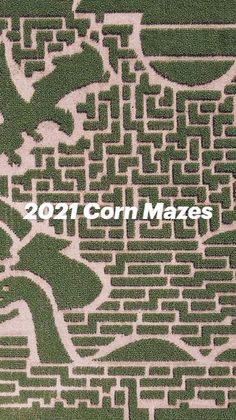 Good Walking Shoes, Corn Maze, Twin Cities, Fun, Hilarious