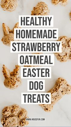 Easter is all about chocolate, but for those who have fur babies, try these safe Easter dog treats instead. #oatmealtreats #dogfood #treats #easter #homemaderecipes Homemade Granola Bars, Homemade Dog Treats, Healthy Dog Treats, Dog Treat Recipes, Dog Food Recipes, Cookie Recipes, Granola Bites, Strawberry Oatmeal, Peanut Butter Dog Treats