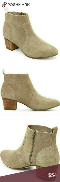 """Brand New Steve Madden Gellar Taupe Ankle Boots Gorgeous and versatile ankle booties from Steve Madden in taupe.  These are brand new but don't come with a box.  Suede upper, round toe, side zip closure, stacked heel.  Pull tab at back, interior lining, cushioned insole.  2 1/8"""" heel.  Suede upper, textile lining, man made sole.  100% authentic.  Size 8. Steve Madden Shoes Ankle Boots & Booties"""