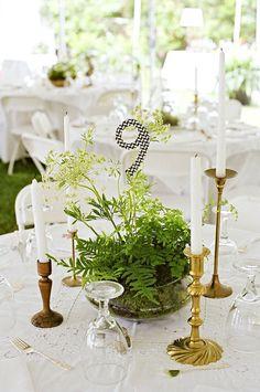 Eclectic green terrarium centerpiece