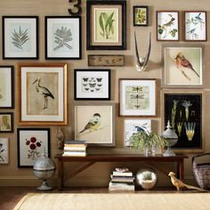 A stunning gallery wall full of natural curiosities - Audubon-like artwork, floral, fauna, etc. Although the frame designs/finishes are different and the hanging appears to have no rhyme or reason, the theme of the artwork offers needed cohesion. A winner!