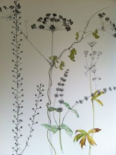 Painting of seed heads