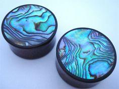 Abalone Shell & Wood Plugs (00 gauge - 2 inch)