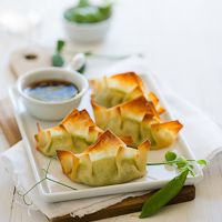 Vegetarian Dumpling Recipe with Peas | Vegetarian Gyoza Pot Stickers  Ingredients: peas, ricotta cheese, sesame oil, olive oil, sea salt, grated parmesan cheese, lemon zest, wonton wrappers