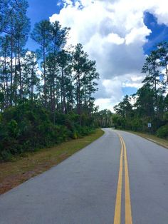 stunning road scene on the way to Everglades Fl