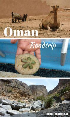 Oman Roadtrip: unsere Reise durch 1001 Nacht! Das zauberhafte Sultanat Oman auf eigene Faust mit dem Mietwagen zu entdecken, ist nicht schwer - aber trotzdem ein kleines Abenteuer! Hier findest du unsere Route mit vielen Tipps und Unterkünften! #Oman #Orient #Roadtrip Oman Travel, Road Trip, Van Life, Travel Inspiration, Places To Visit, Asia, Camping, Tours, World