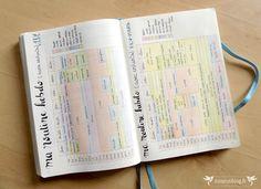 Bullet Journal : Fév