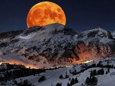 Romantic Moon