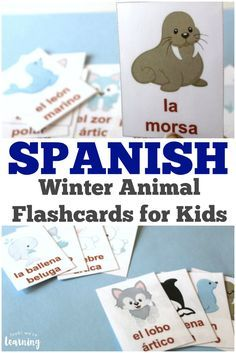 Learn how to pronounce Arctic animal names in Spanish with these Spanish winter animal flashcards! #spanish #winteractivities