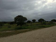 Extremadura en primavera.