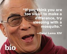 """If you think you are too small to make a difference, try sleeping with a mosquito."" Dalai Lama"