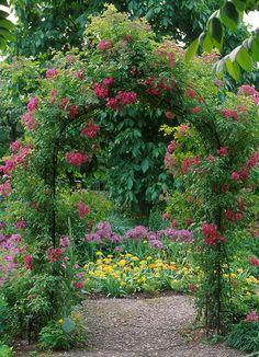 Victorian Garden Arch in an English Country Garden!