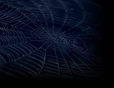 """[[Geopolitical Chessboard is like a spider's web. It is very fragile, """"sticky and hard"""" to disengage while wherever you try to touch it it will cause shockwaves to the rest of the web. ]]   ---- Alexandros Niklan, IISCA, Sr. Security Consultant at Crete FM Greece"""