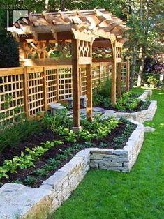 Beautiful razed garden bed | Backyards Click