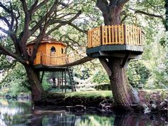 Pinner said: treehouse in the backyard . great idea to have a main treehouse and having a fenced verandah type thingy around a second tree with a bridge joining them together :)