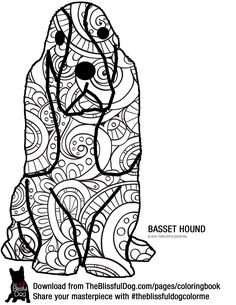 basset hound coloring pages - 1000 images about the blissful dog basset hound on