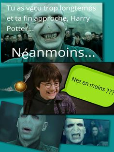 Blague Harry Potter - Harry / Voldemort mdr
