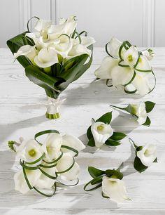 White Wedding Calla Lily Collection 2 | M&S