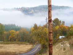 www.jodistilpphotography.com, landscapes, copyright Jodi Stilp Photography LLC, foggy fall morning,