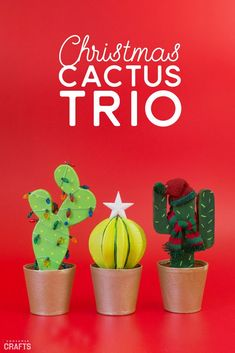 Add a bit of flair to paper mache and make this Christmas DIY cactus trio. Because what's not to love about a decorated cactus? Christmas Activities, Christmas Themes, Holiday Crafts, Christmas Decorations, Christmas Cactus, Christmas Diy, Cactus Decor, Christmas Is Coming, Christmas Inspiration