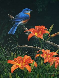 Bluebird and Day Lilies - painting by Mark Mueller