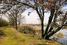 Normaal gesloten maar met de boswachter wel toegankelijk. Dit deel van de Pannenhoef is schitterend! #photography #travelphotography #traveller #canon #canonnederland #canon_photos #fotocursus #fotoreis #travelblog #reizen #reisjournalist #travelwriter#fotoworkshop #willemlaros.nl #reisfotografie #landschapsfotografie #follow #instalaros
