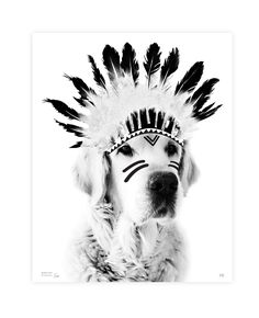 poster hond