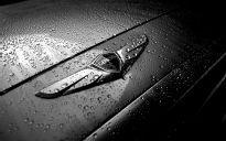 2015 Hyundai Genesis badge