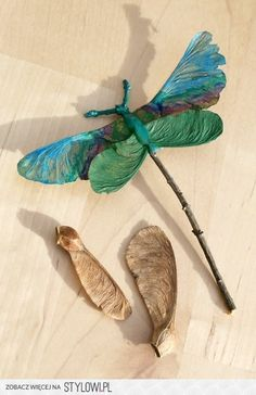 Make a DRAGONFLY using leaves & twigs!