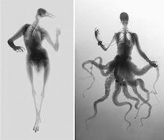Gorgeous art pieces: human/animal hybrid xrays.
