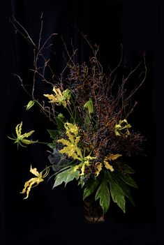 Tall Flower Arrangements, Altar Flowers, Ikebana Flower Arrangement, Tall Flowers, Vase Arrangements, Green Flowers, Flower Vases, Flower Art, Centerpieces