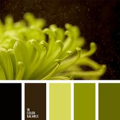 С 26 октября по 1 ноября на всеми нами любимой и уже такой родной Ярмарке Мастеров проходит тематическая неделя «Ставим на черное». И безусловно, этот глубокий и таинственный цвет не мог не привлечь моего внимания. Я очень люблю делать подборки цветовых палитр, каждый раз получаю массу удовольствия от их созерцания. Так что для тех, кто также любит цвет — немного о нём плюс палитры.