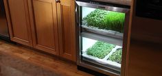 Urban Cultivator - Kitchen Garden for the artisan chef at heart. Definitely going in our home!