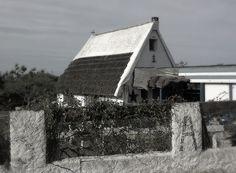 LA CAMARGUE    -Saintes- Maries- de- la- Mer