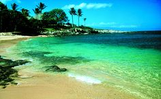Kapalua Bay - Maui-the snorkling..the moment you enter the water you will see fish