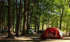 Camping Made Easy - Try These Proven Tips. Many people enjoy camping because it gives them the opportunity to relax and connect with nature. To go camping, a place and some information is all that i Camping Pranks, Camping Menu, Camping Humor, Family Camping, Tent Camping, Outdoor Camping, Outdoor Gear, Camping Tips, Camping Recipes