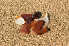 Seaglass finds, Hervey Bay, QLD. Love Photography, Sea Glass, Awesome