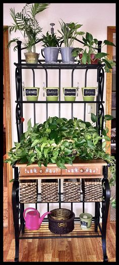 I converted my baker's rack into a plant & herb garden. Herbs were just plan Ich habe mein Bäcke Herb Garden Pallet, Pallets Garden, Small Backyard Landscaping, Landscaping With Rocks, Small Herb Gardens, Outdoor Gardens, Outdoor Bakers Rack, Herb Rack, Rustic Outdoor Furniture
