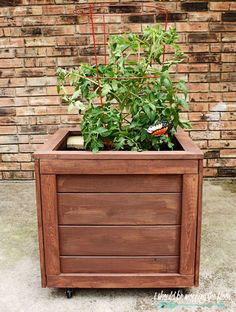 How to Build a Rolling Planter Box: Complete step-by-step tutorial with photos. Wooden Planter Boxes Diy, Wood Pallet Planters, Cedar Planter Box, Garden Planter Boxes, Raised Planter, Diy Planters, Wooden Diy, Box Garden, Pallet Patio